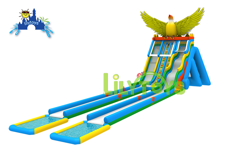 Eagle Water Slide